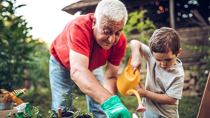Grandfather with grandson gardening